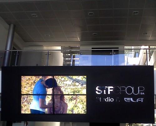 Oficinas STF group
