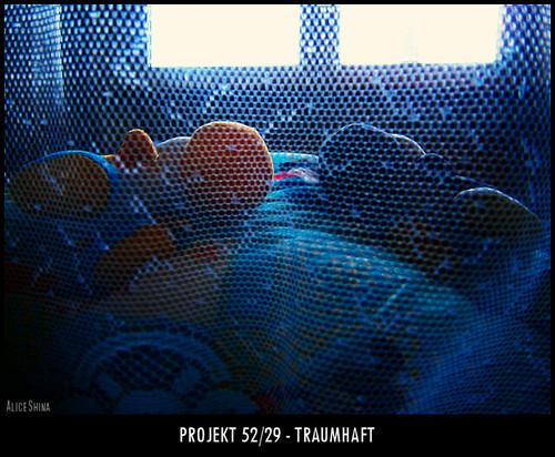 Projekt 52/29 - Traumhaft