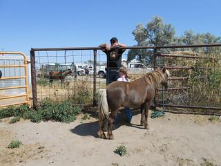 Horse Lesson 26Jul13 (1)