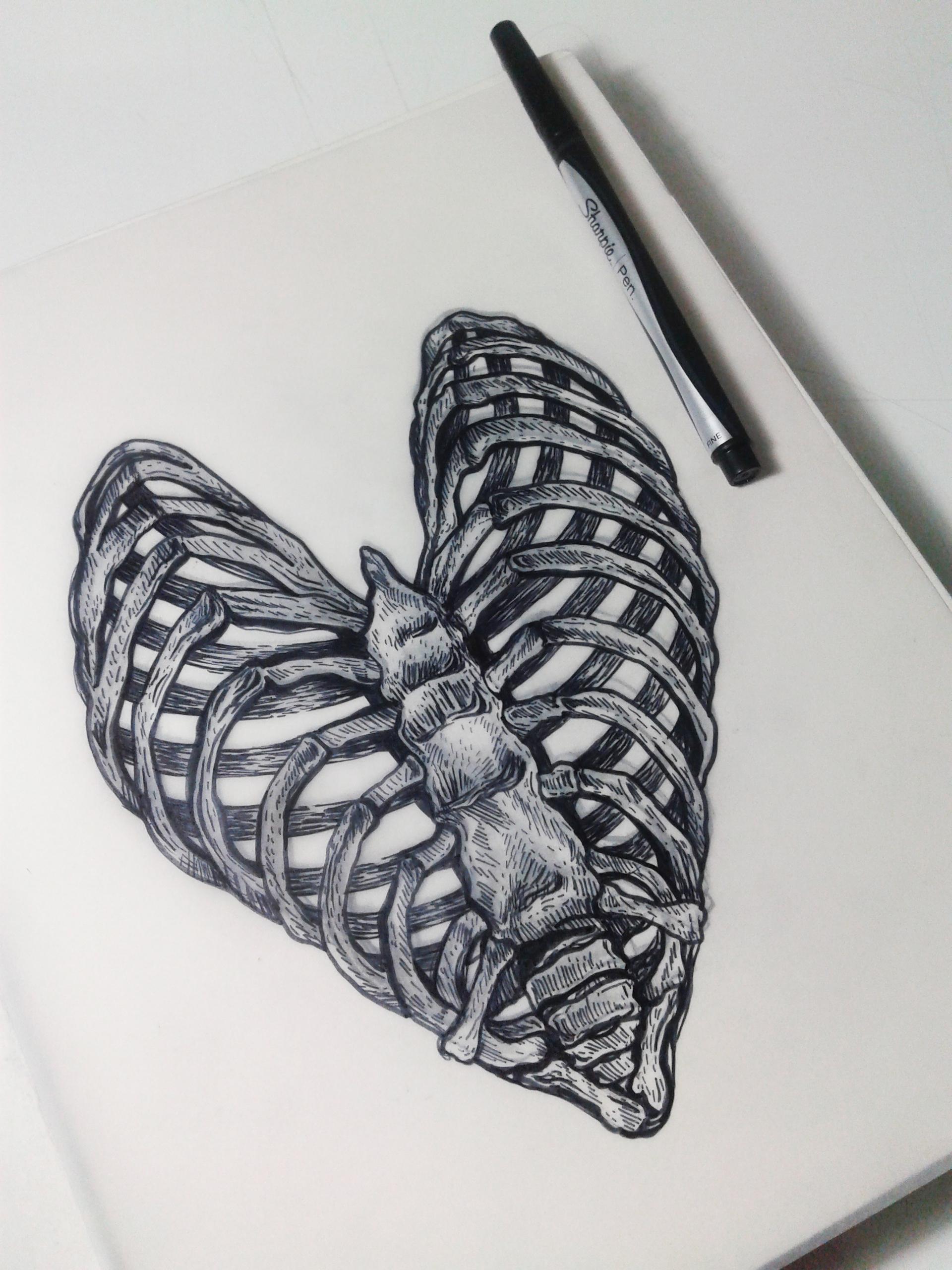 Skeleton Drawings Tumblr