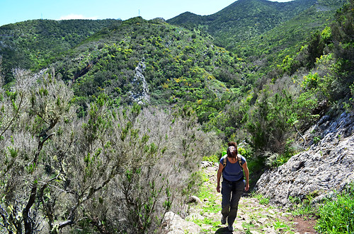 Camino Real, Teno National Park