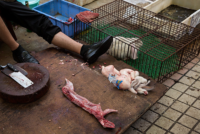 Dead rabbits at a wet market in Guangzhou, China.