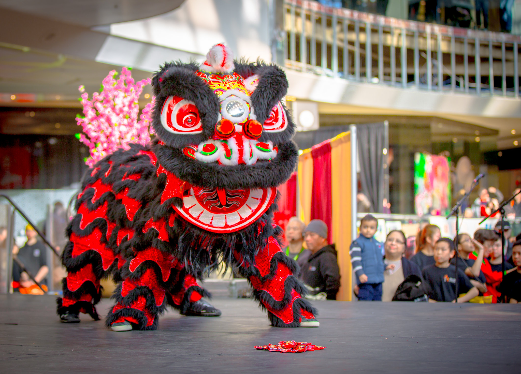 Edmonton Chinese New Year 2015
