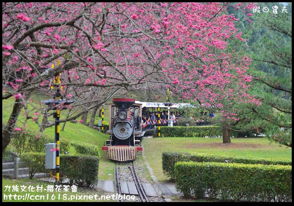 九族文化村-櫻花茶會DSC_4683