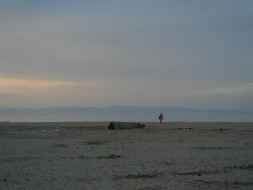 DSCN1809 Seascape Beach in Aptos, March 2015