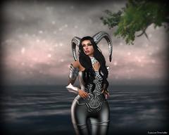 Minerva 1