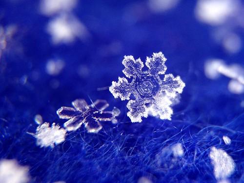 Snowflake on blue fleece (iPhone 5 & Olloclip)
