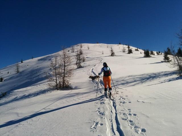 Kurz vor dem Dorfberg-Gipfel