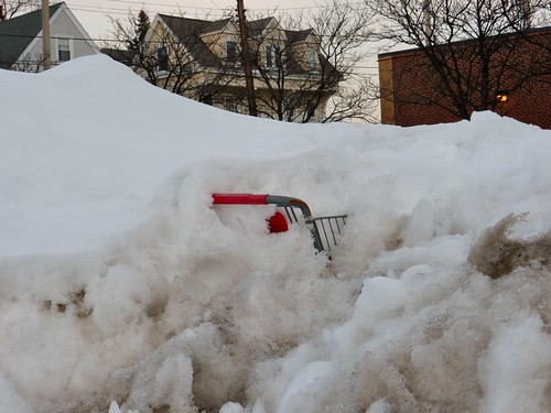 Buried shopping cart