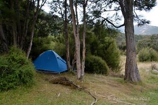 Kuripapango DOC Camp, HB