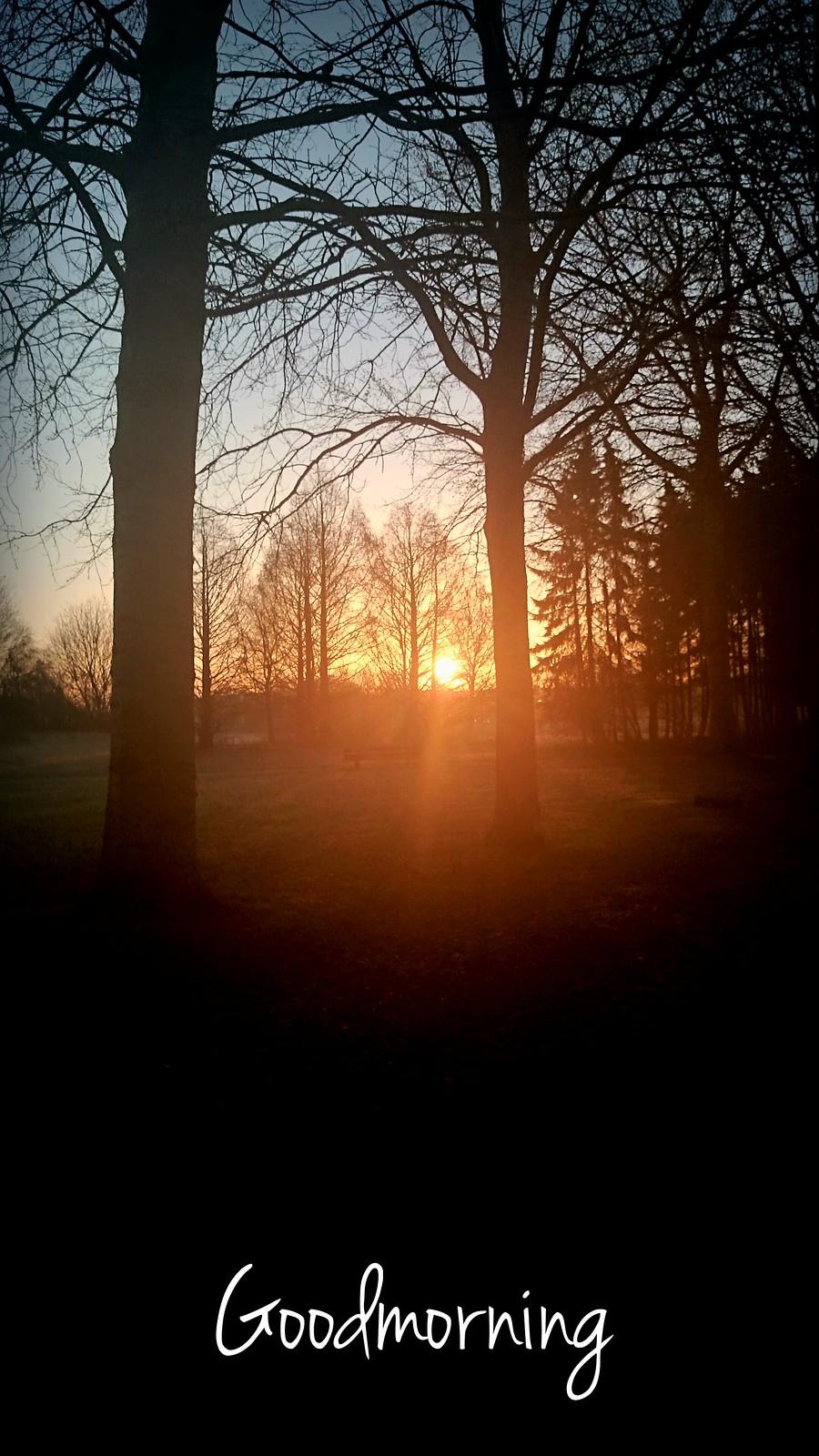 Goodmorning! (12-03-2015).
