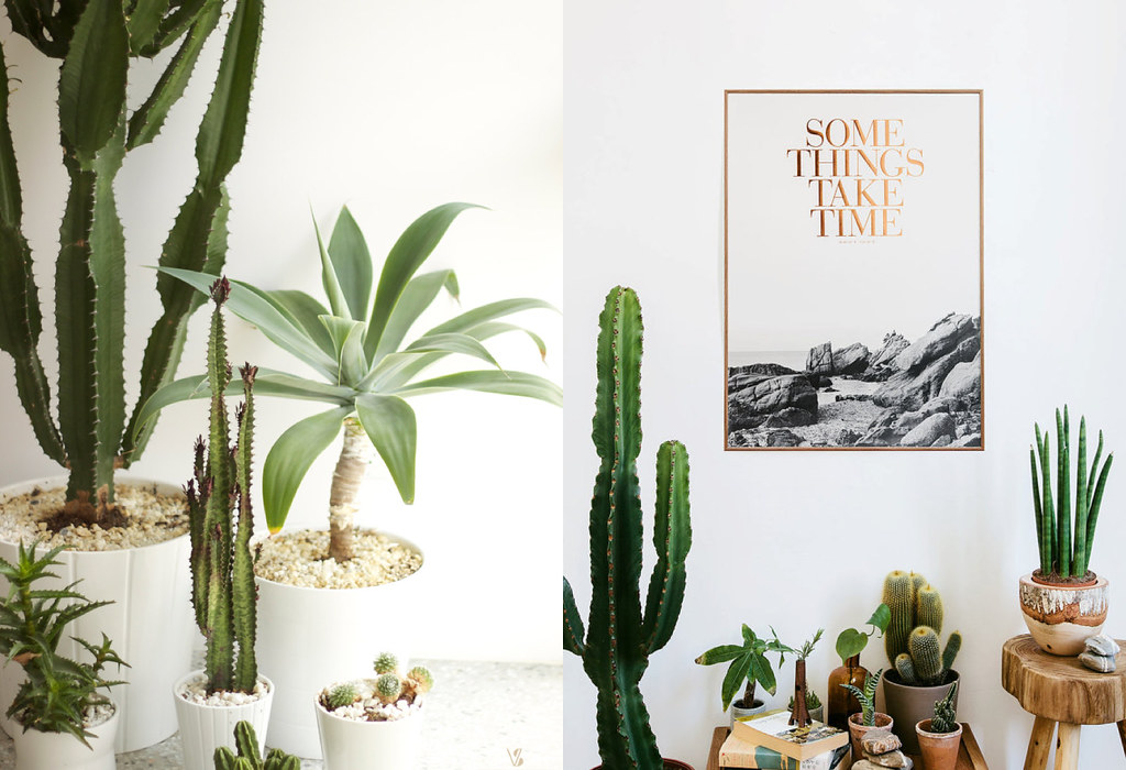 Home decor near me houseplants and boho decor inspiration for Home decor nearby