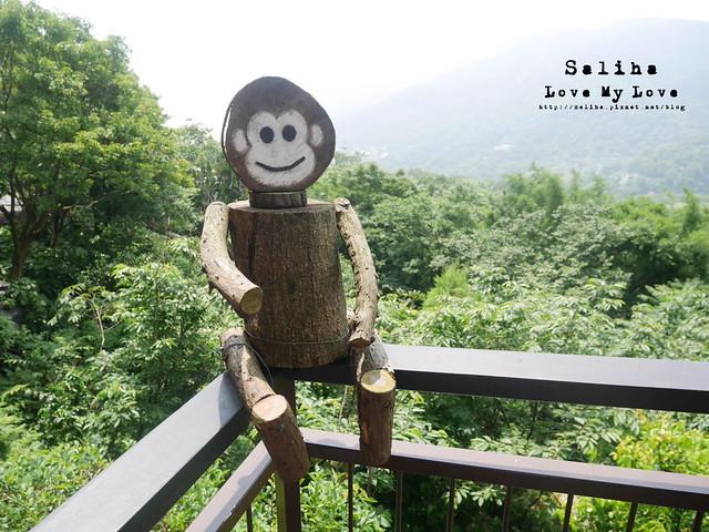 陽明山踏青一日遊景點 (25)