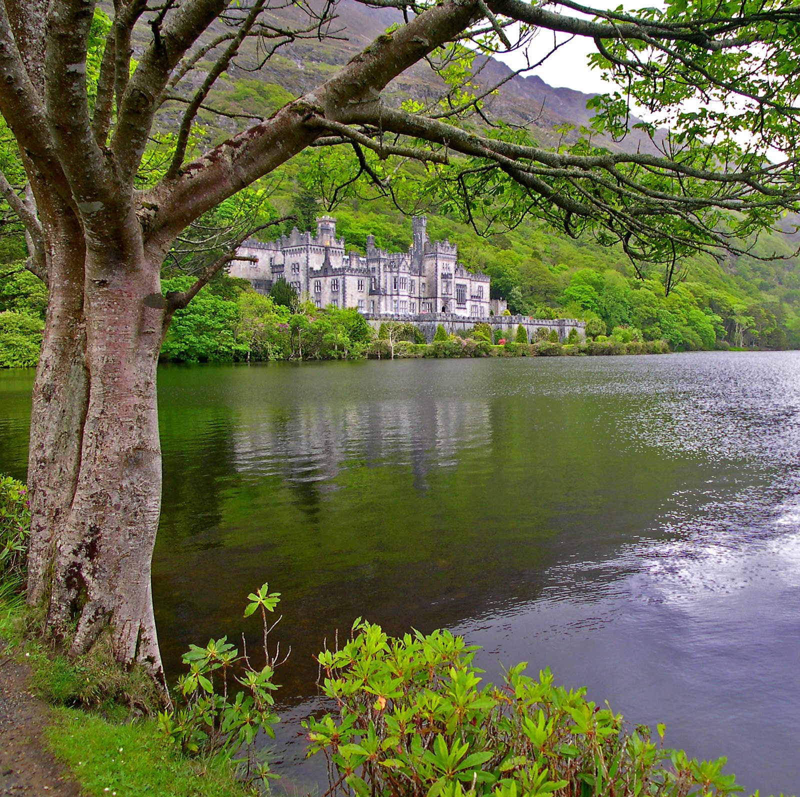 Kylemore Abbey, Letterfrack, Co. Galway. Credit Jim