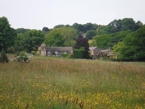 Farm in Porter Valley