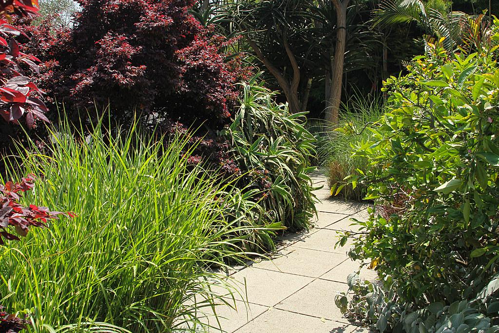 Jay Griffith S Landscape Design Studio Venice Garden H Flickr