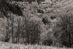 fayet Aveyron