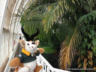 Teddybok visiting Kew Gardens
