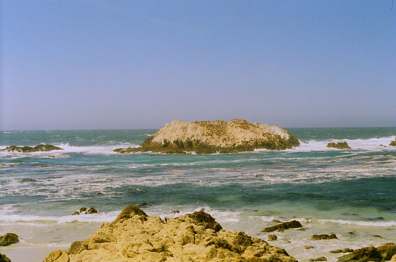 Point Lobos - California