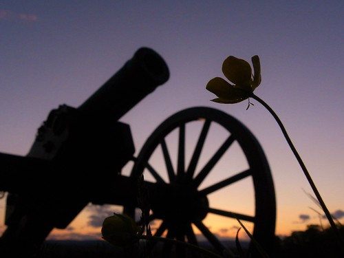 Troup Artillery Cabell's Battalion Sunset