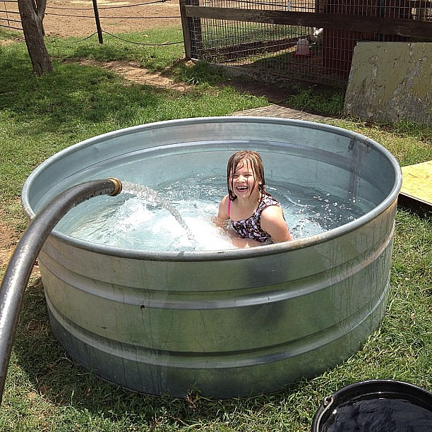 samantha learning how to swim in her redneck swimming pool flickr photo sharing