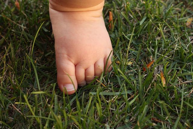 baby toe
