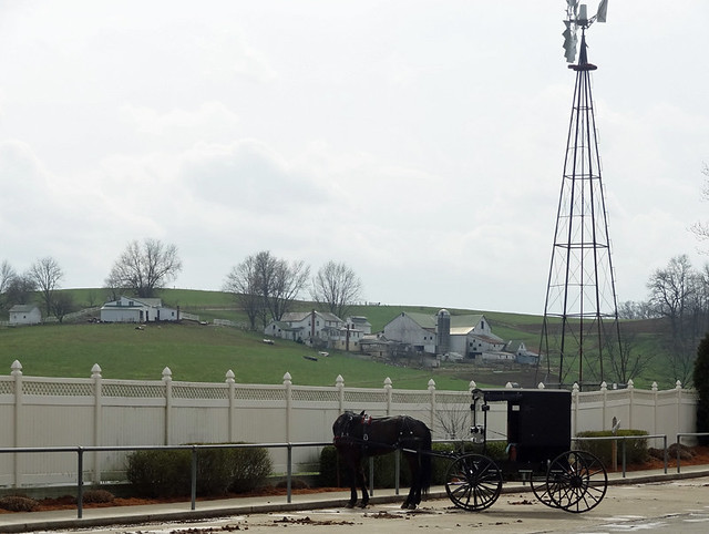 horse-buggy-parking-lot
