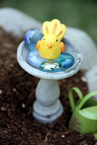 Yellow-Bird-in-Bird-Bath