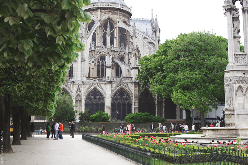 Behind the Notre Dame