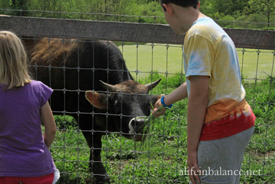 Farm Tour: Eckerton Hill Farm and Rodale