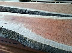 Exotic slab lumber