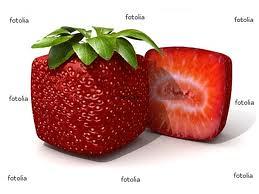 fraisons