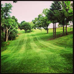 Freshly cut #fairways #DiscGolf  @GrandVuePark