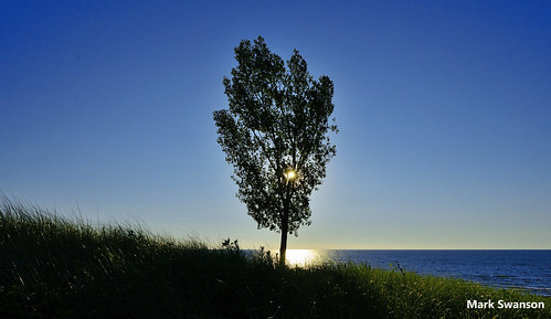 trees sunset sky lake color beach nature grass landscape nikon michigan dunes stjoseph lakemichigan greatlakes d5100