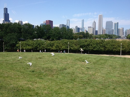 Chicago-84