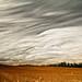 Sky Waves by Matt Molloy