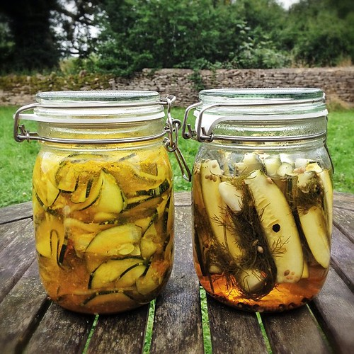 Marrow pickles, two ways. Looks promising!