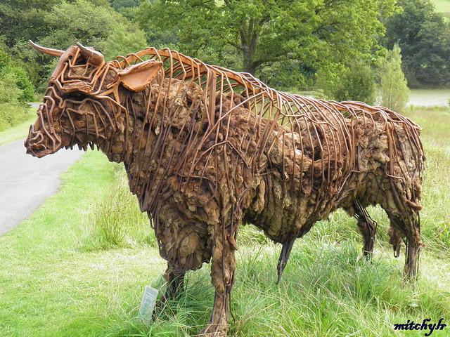 Load Of Bull 2