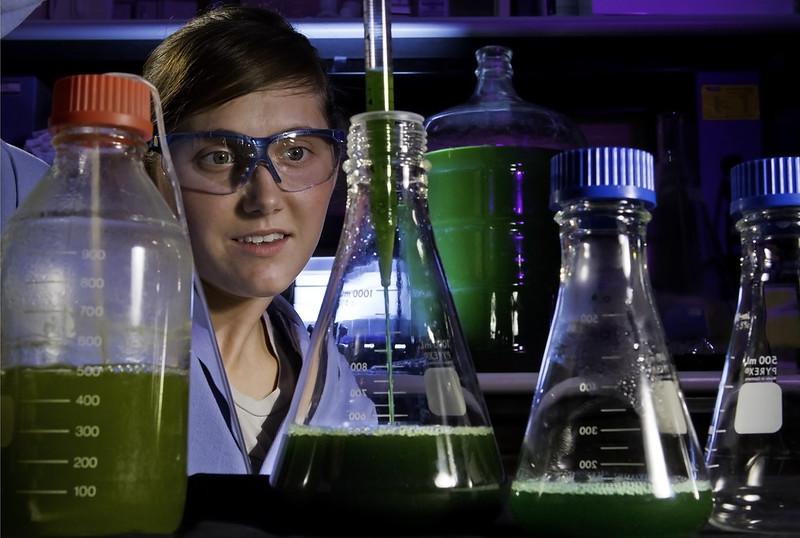 Tarryn Miller: Fueling biofuel's promise
