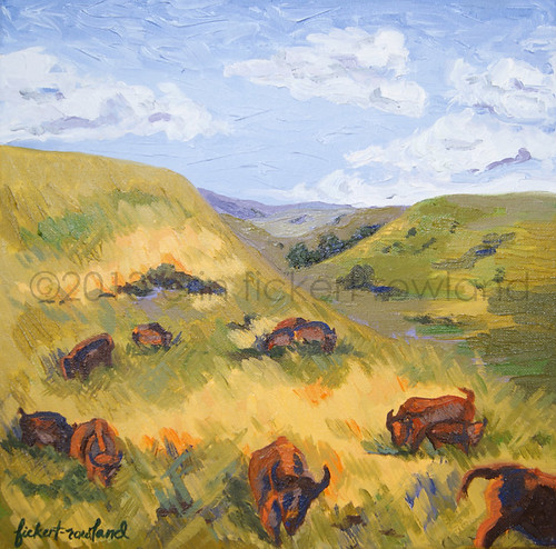 The Promise of Return- Bison on Tallgrass Prairie of Flint Hills