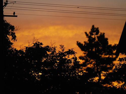 morning red sky dawn serbia aurora morn srbija dayspring curug fujifilmxp50