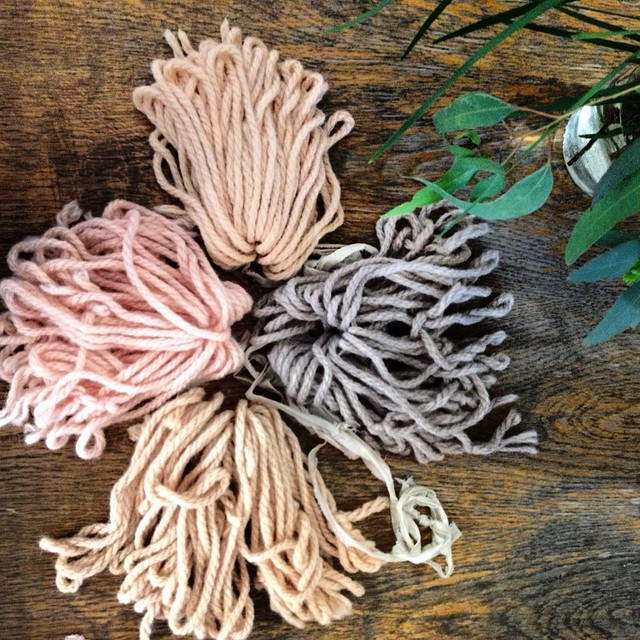 Strawberry natural dyeing. Clockwise from top: copper iron aluminium solar #naturaldyeing