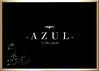 AZUL LOGO 1433_1024