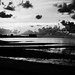 Black and White Morning by nauticalnancy