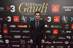 Catifa vermella VII Premis Gaudí (93)