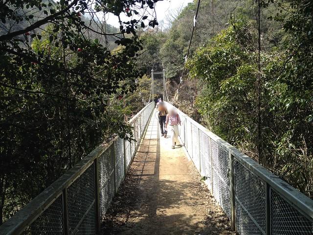 六甲全山縦走路 天王吊橋