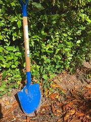 Calling a shovel…