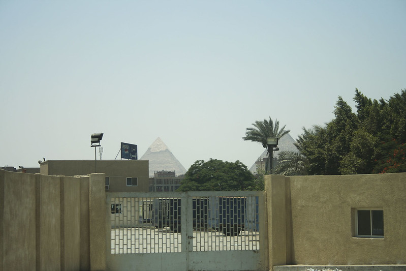 Egypt_2008_24