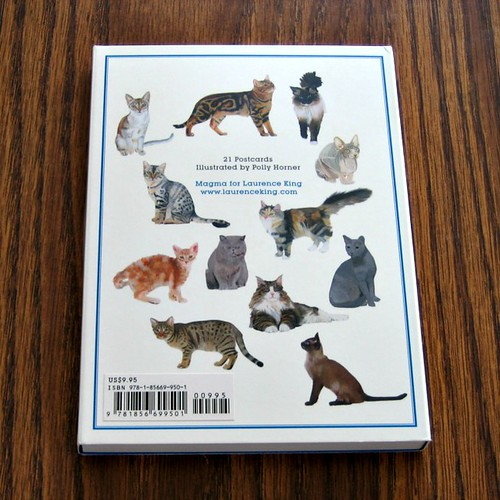 Cat Postcards Giveaway