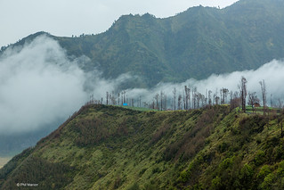 Near the town of Cemoro Lawang on the lip of the Tengger volcano caldera, An early morning mist lingers over the Sea of Sands - Java Indonesia